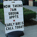 early bird grooming